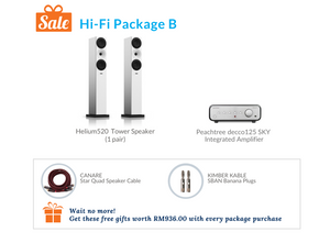 Hi-Fi Package B (Peachtree Integrated Amplifier)
