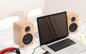 Peachtree Audio M24 Hi-Fi Speaker - MACROLOGIX