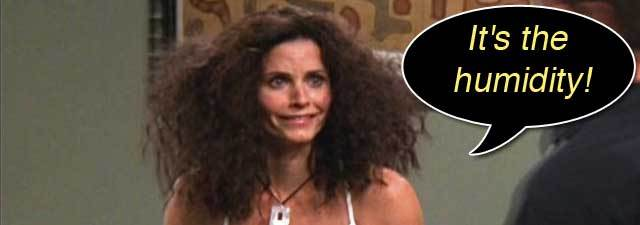 An Episode of Friends: Is your hair ever like Monica's?