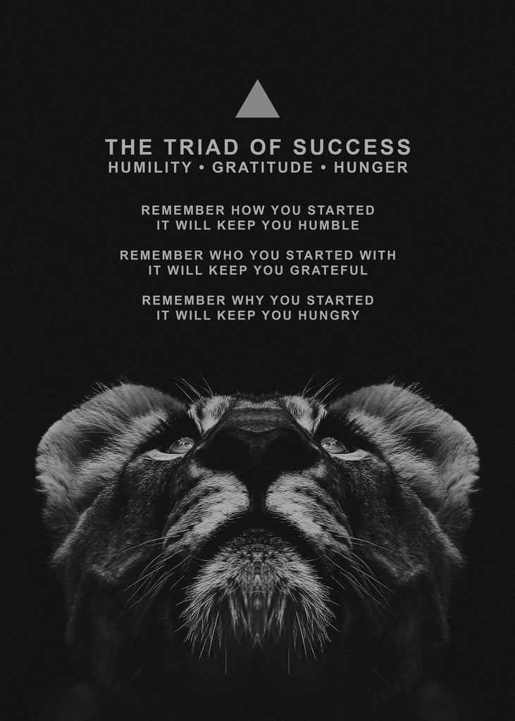 NEW: The Triad of Success | Motivational Canvas Art