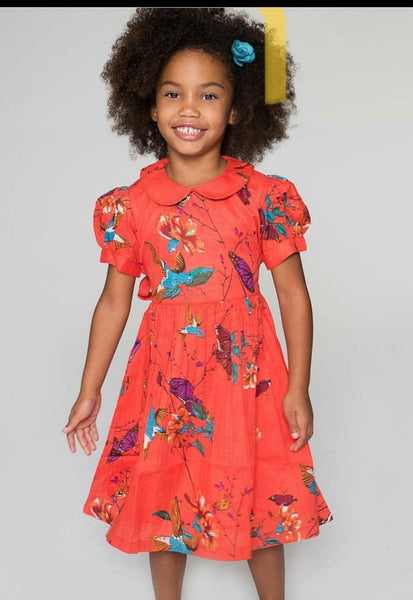 Orange Hummingbird Dress Dress Yo Baby Wholesale