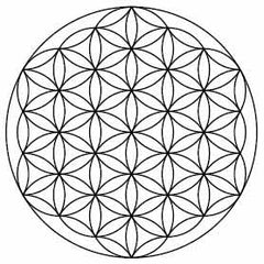 flower of life symbol_What Do You Know About Symbols_Crystal Divine Alchemy