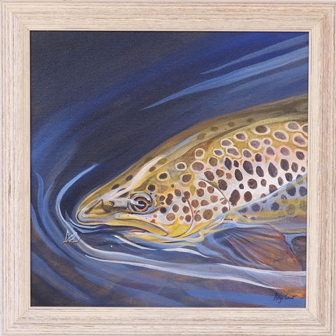 Blue and Gold, a painting of a brown trout by Angus Grant Art