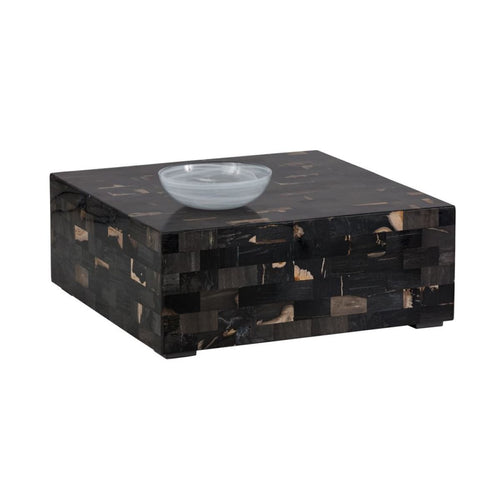 ALEGRA COFFEE TABLE - PETRIFIED WOOD