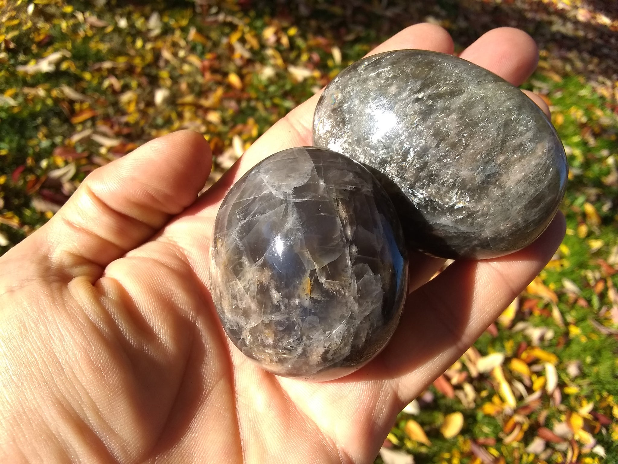 Black Moonstone Palmstones