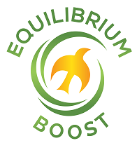 Equilibrium Coupons and Promo Code