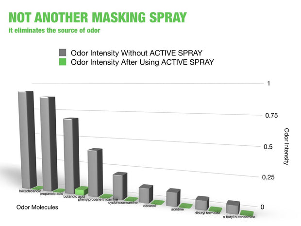 Active Spray Shoe & Gear Deodorizer