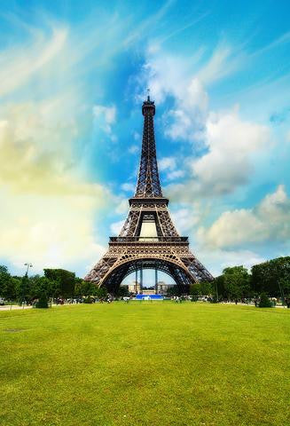Attractions Iconic Landmarks Paris Themed Eiffel Tower Backdrop J04144
