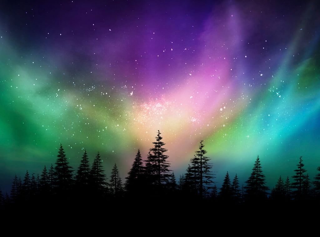 Aurora Aurora Forest Night View Photography Backdrop IBD-24256