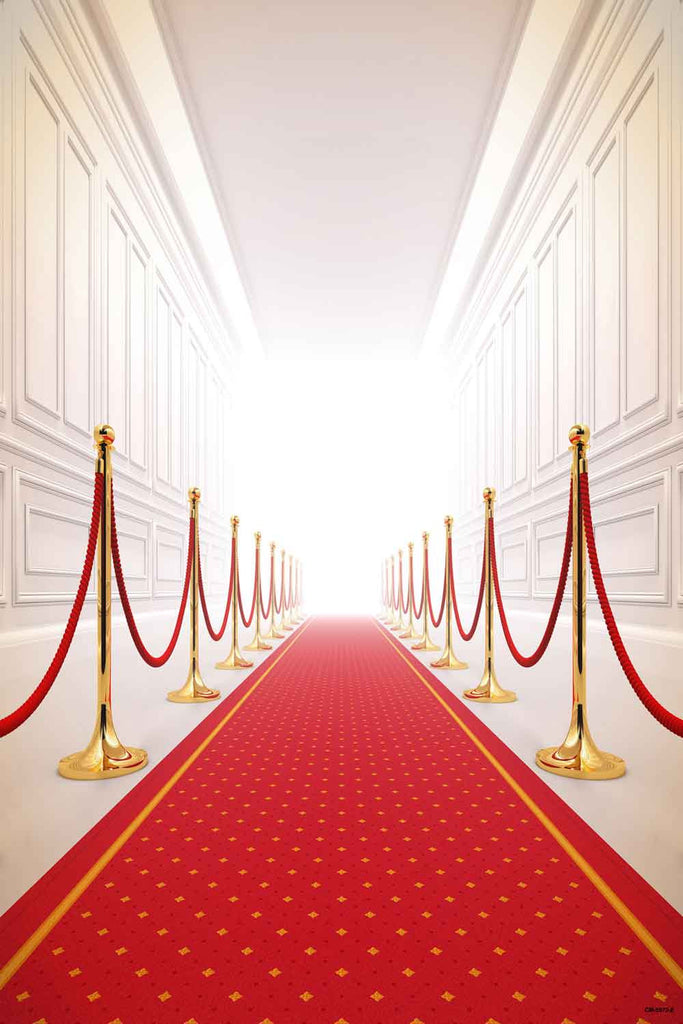Red Carpet Backdrops Party Background Wall Backdrop