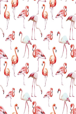 Baby Shower Backdrops Red Backdrops  Flamingo Backgrounds