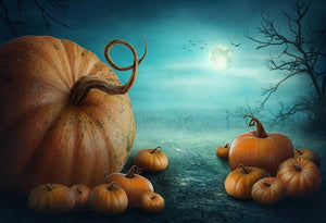 Festival Backdrops Halloween Backdrops Pumpkin Background G-028