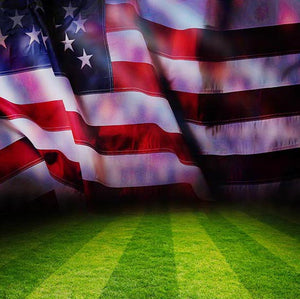 Bunting Backdrops American Flag Background Grunge Backdrops G-314