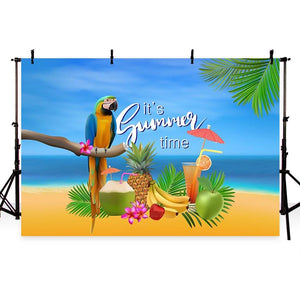 Summer Backdrops Blue Background Beach Backdrop G-432