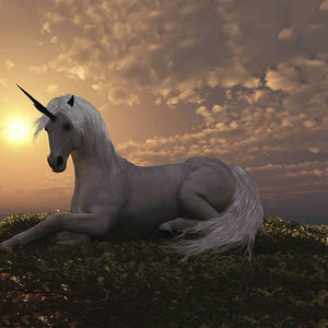 Animal Backdrops Photo Backdrops Unicorn Backgrounds G-445