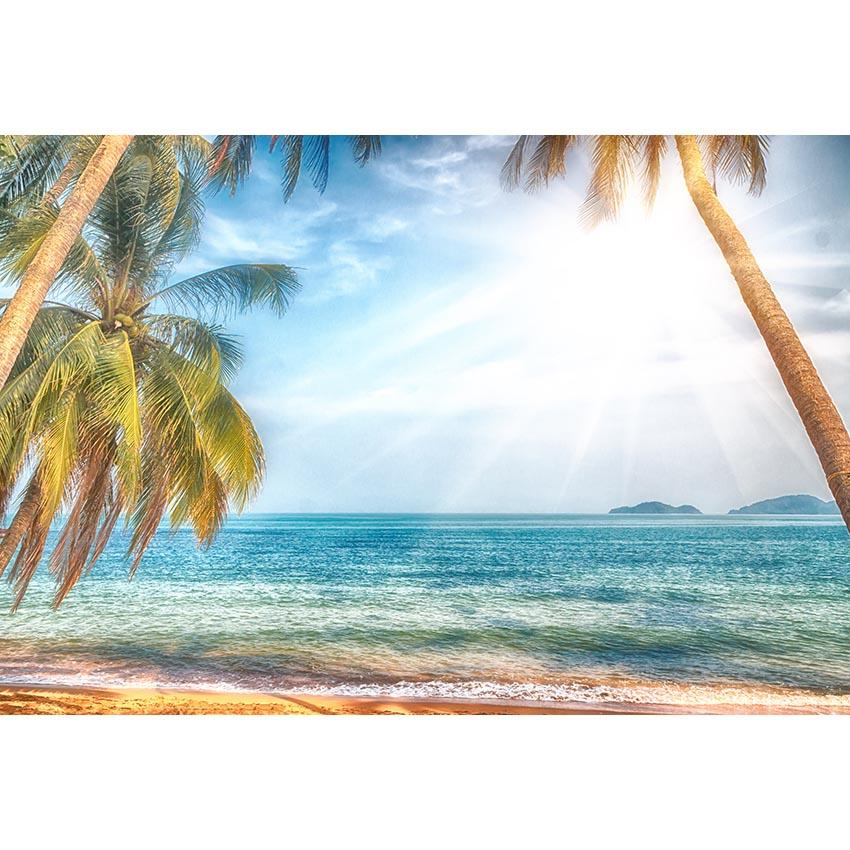 Scenic Backdrops Beach Backdrop Ocean Backgrounds Blue Sky G-456