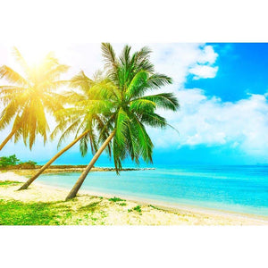 Beaches Custom Photography Ocean backdrop G-500