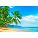 Ocean Backgrounds Beach Backdrop G-503