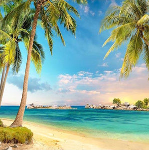 Beaches Ocean Backgrounds Beach Backdrop G-504
