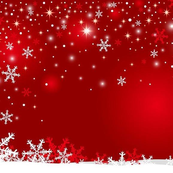 Season Backgrounds Winter Backdrop Snowy Backdrop Snowflake G-517