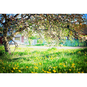 Tree Backdrops Parks Backdrop Yellow Flowers Backgrounds G-524