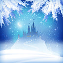 Castle Backdrops Snowy Backgrounds Night Backdrops G-531