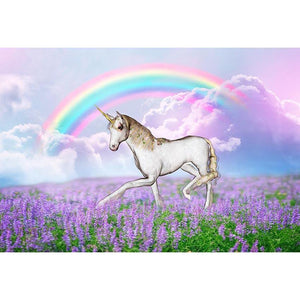 Animal Backdrops Rainbow Backdrop Alice In Wonderland Background G-541