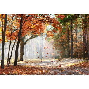 Season Backdrops Autumn Backdrops Beautiful Maple Leaf Background G-593