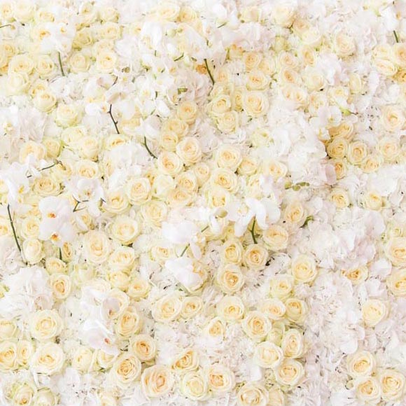 Patterned Backdrops Flower Backdrop Yellow Backgrounds G-605