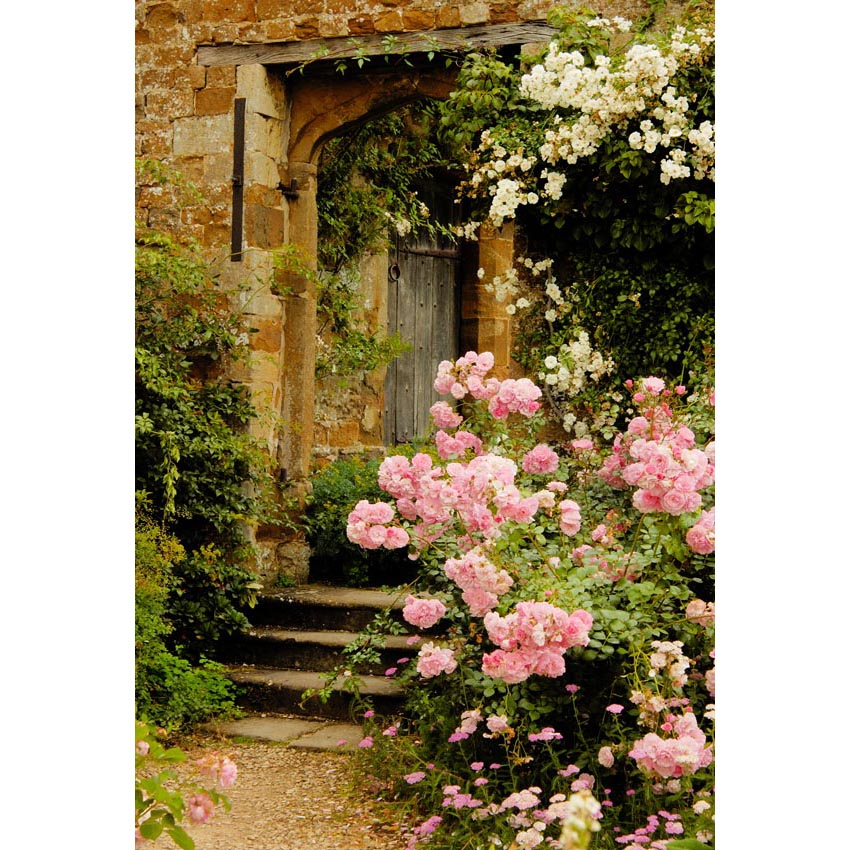 Scenic Backdrops Trees Flowers Doors Backdrops IBD-20008
