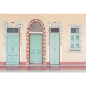 Scenic Backdrops Door Backdrops Photography Green Door G-670