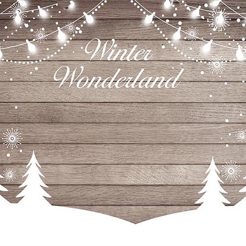 Vintage Backdrop Wooden Backgrounds Vintage Backdrops Snow G-755