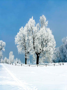 Festival Backdrops Season Background Winter Backdrops J00745-E