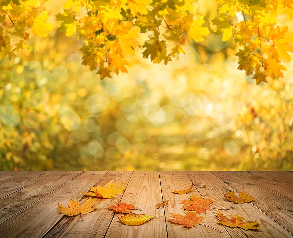 Matte Autumn Background Harvest Season Backdrops IBD-19366