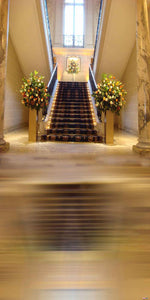 Scenic Backdrops Staircase Backdrops Church Background N11171-E