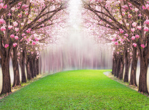 Pink Flower Tree Romantic Tunnel Pink Trumpet Tree Background Photography Backdrops IBD-19980