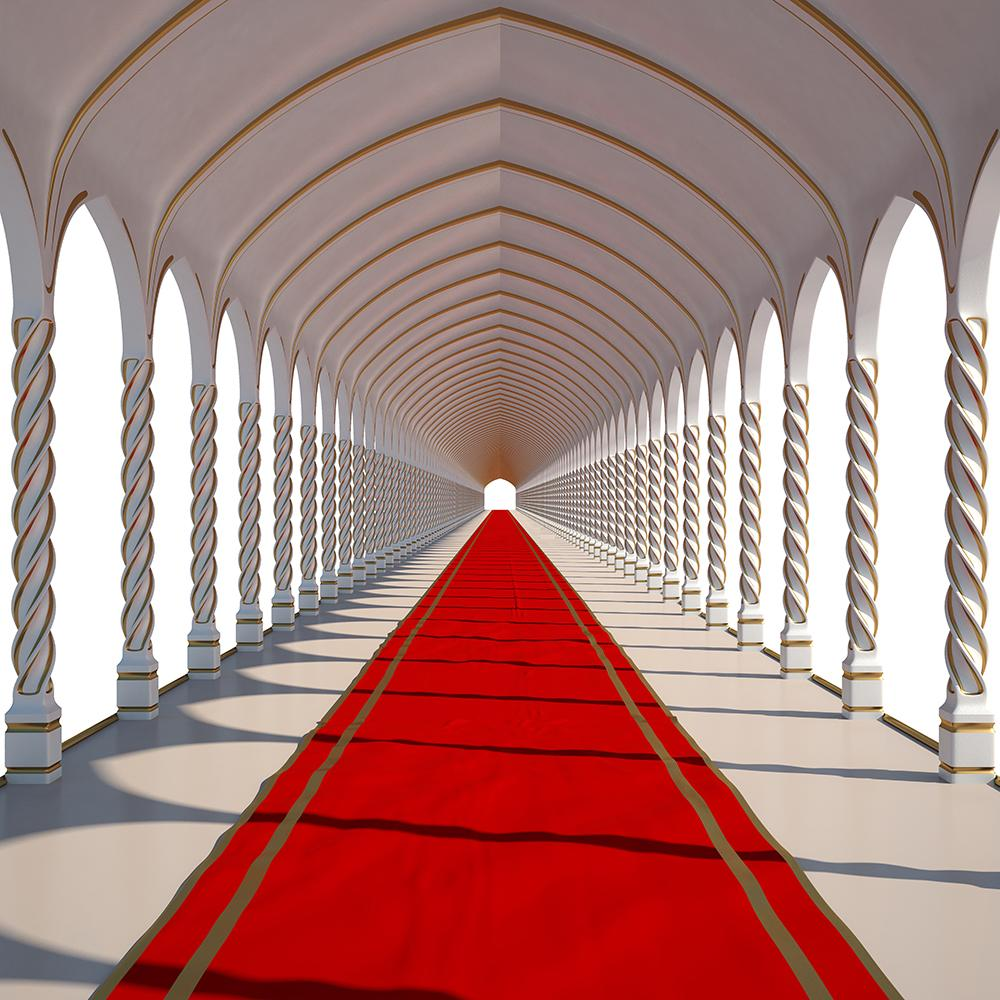Red Carpet Wedding Backdrop Photography IBD-19428