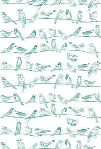 Polka Dot Printed Backdrop Blue Backdrop Birds Background S-2677