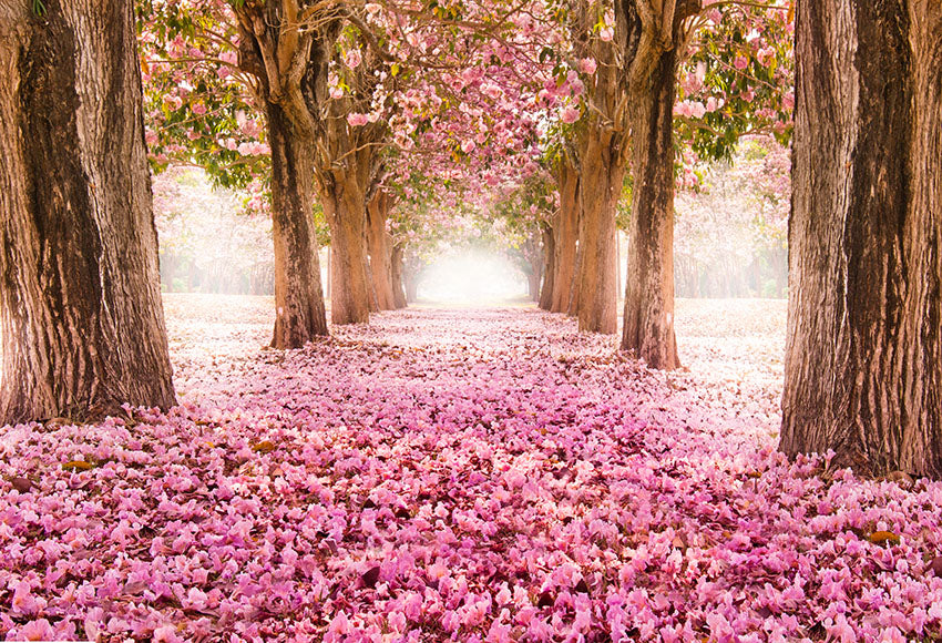 Scenic Backdrops Trees Parks Woodland Backdrops Pink Background S-2732