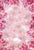 Flower Backdrops Flower Backgrounds Pink Flower S-2994