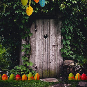 Vintage Backdrop Scenic Backgrounds Door For Festival Backdrops S-3053