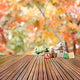 Season Backdrops Autumn Background Trees Parks Maple Leaf Backdrops S-3073