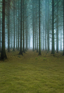Scenic Backdrops Trees Woodland Backdrops Green Backgrounds S-3151