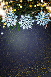 Snowflake Matte with Dark Background Christmas Backdrops IBD-19383