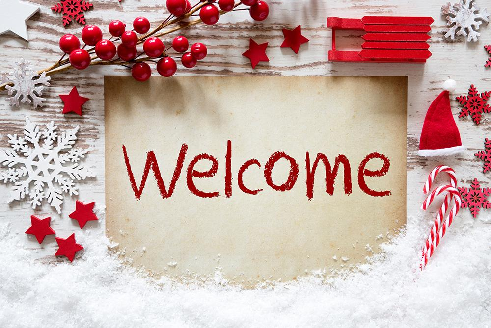 Welcome to Christmas Winter Background Photography Backdrops IBD-19400