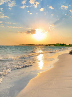 Season Backdrops Summer Backdrops Beach Background Sunset X39-E