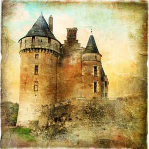 Scenic Backdrops Castle Backdrop Portrait Background YY00413-E