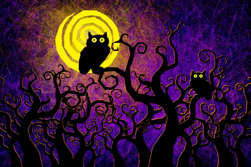 Cartoon Textured Background Cute Owl Halloween Backdrops IBD-H19122
