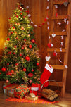 Christmas Indoor Decoration Background Christmas Backdrop For Portrait Photography IBD-P19195