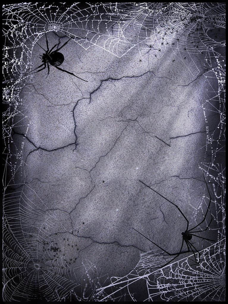 Festival Backdrops Halloween Cracked Walls Spider Web Background IBD-P19065